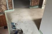 Dachboden-124